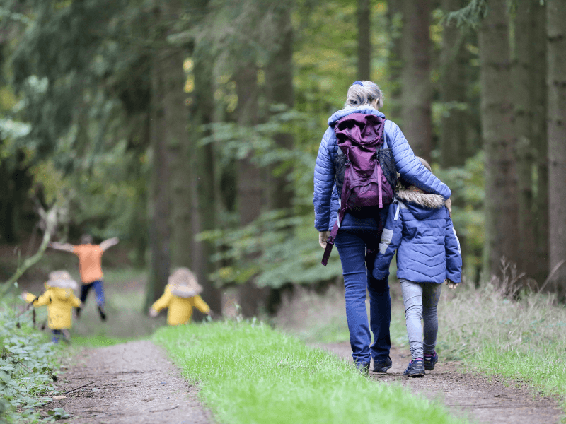 Folk går tur i en skov